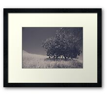 I Feel You Watching Over Framed Print