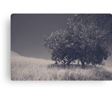 I Feel You Watching Over Canvas Print