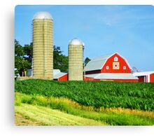Country Colors Canvas Print