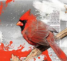 Cardinal by Tim Miklos