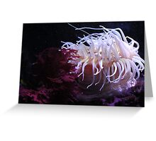 Red sea fan and anenome Greeting Card