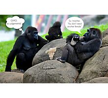 The Gossip at the Zoo Photographic Print