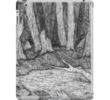 Tieran's Tale iPad Case/Skin