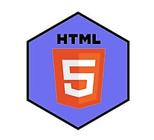 html html5 programming language hexagonal sticker Photographic Print