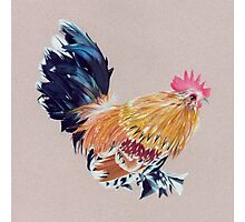 Colored Pencil Rooster Photographic Print