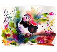 Puffin Poster
