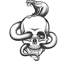 Snake and Skull Engraving Illustration Photographic Print