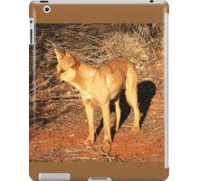Ringo the Dingo iPad Case/Skin