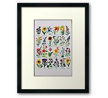 Wildflower Alphabet Framed Print