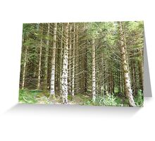 Tall & straight reaching for the sky Greeting Card