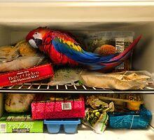 Bar Joke Parrot in the Freezer by GolemAura
