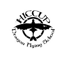 Hiccup's Dragon Flying School Photographic Print