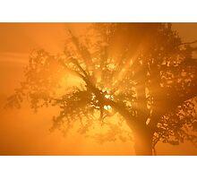 Orange Sunrise Photographic Print