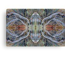 Driftwood Spider Canvas Print