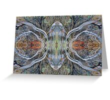 Driftwood Spider Greeting Card