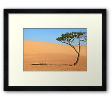 Lone Tree and Sand Dunes Framed Print
