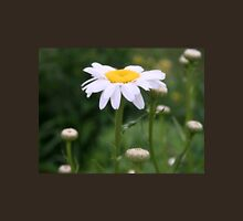 White Shasta Daisy With Buds Womens Fitted T-Shirt
