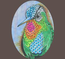 Rainbow Hummingbird Pen and Ink Illustration Womens Fitted T-Shirt