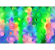Vineyard Pastels Photographic Print
