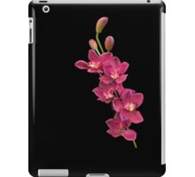 PINK ORCHIDS FOR JEAN iPad Case/Skin