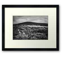 ..from Bog to Summit Framed Print