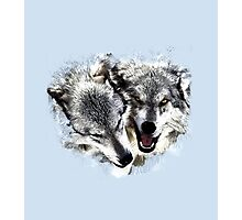Playful Wolves Pen & Ink Sketch Photographic Print