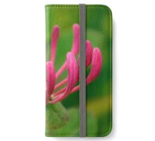Pink Honeysuckle flower, home decor and gift ideas iPhone Wallet/Case/Skin