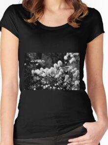 Branch Clouds  Women's Fitted Scoop T-Shirt