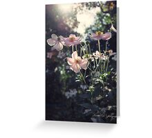 In a Country Garden Greeting Card