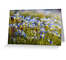 Teeny Tiny Flowers Greeting Card