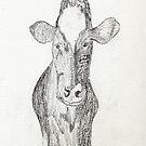 Jen's Gentle COW by Anne Gitto