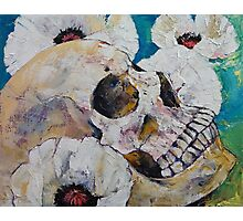 Skull with White Poppies Photographic Print