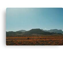In the Desert (Utah) Canvas Print