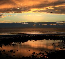 Burleigh Heads Sunrise by Noel Elliot