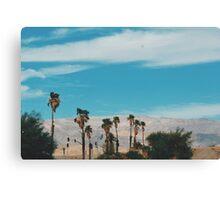 Desert Palms (Indio, California) Canvas Print