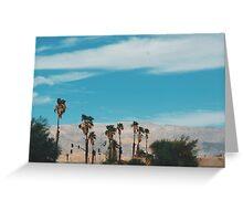 Desert Palms (Indio, California) Greeting Card