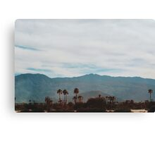 In the Desert (Indio) Canvas Print