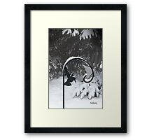 Winter Hummingbird Framed Print