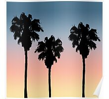 Sunset Palm Trees Poster