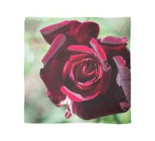 Red Rose (A-Line Dress) Scarf