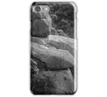 Granite Buddha iPhone Case/Skin