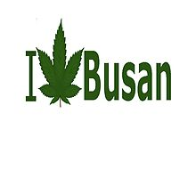 I Love Busan by Ganjastan