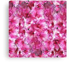 Gladiolus Jumble Canvas Print