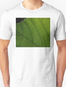 Pretty Pinnate T-Shirt