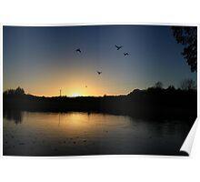 Flying ducks over Llangollen Canal Poster
