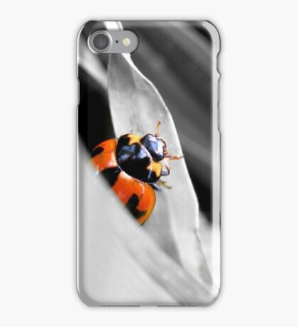 Little Red Lady Bug iPhone Case/Skin