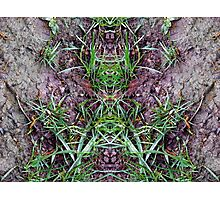 Reflective Perspective Photographic Print