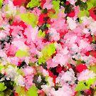 Summer Sensation by Trilbycole