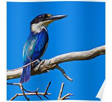 kingfisher in blue Poster