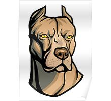 Pit Bull Head Poster
